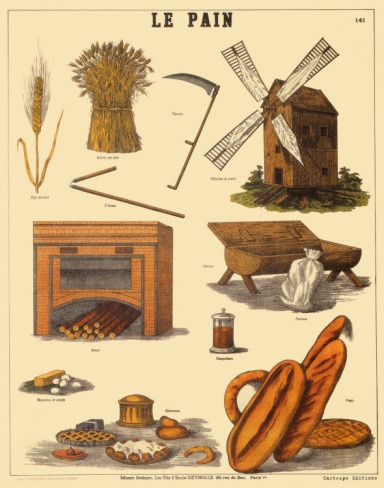 Antique French Educational Poster - Le Pain