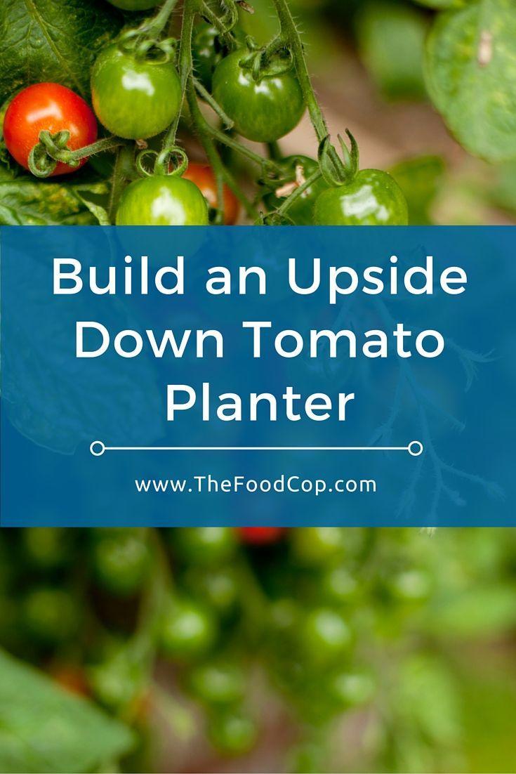 topsy turvy tomato planter instructions