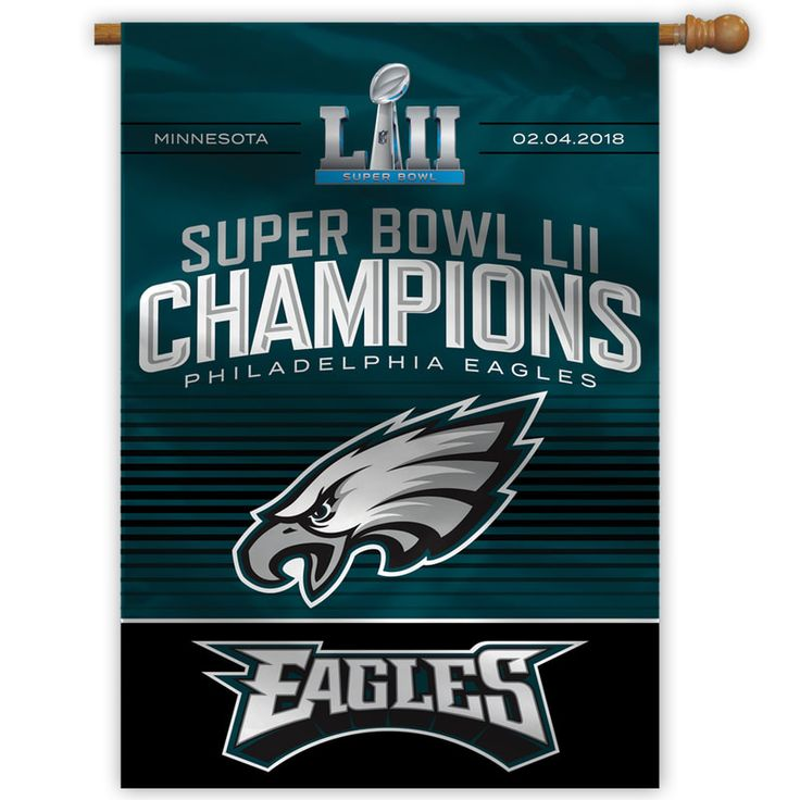Image result for Eagles Super Bowl champions