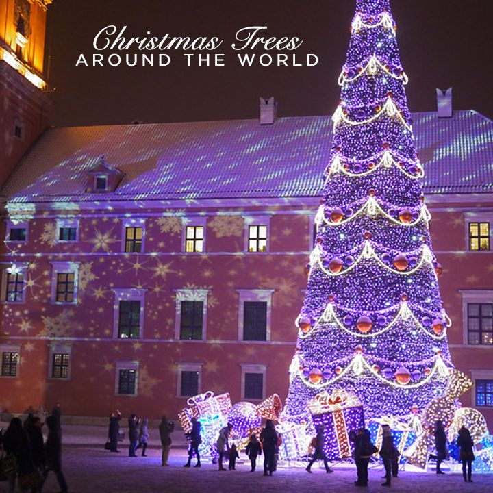 A glittering look at Christmas trees from all over the world this festive season.