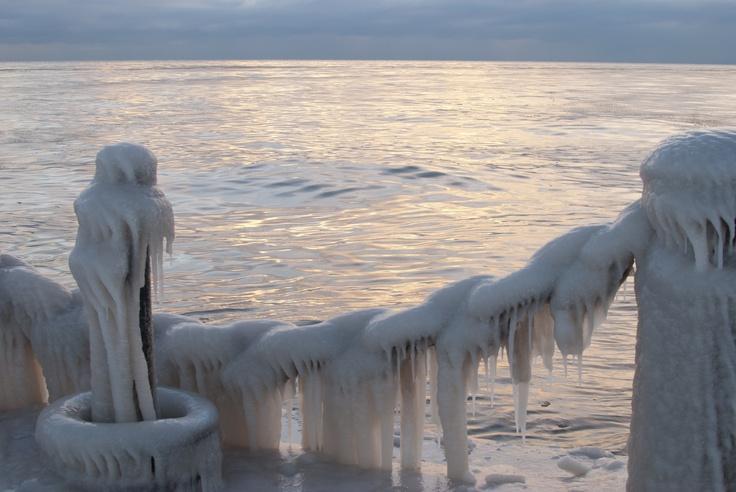 Frozen Gold.  Winter in Burlington, Ontario - Feb. 2013