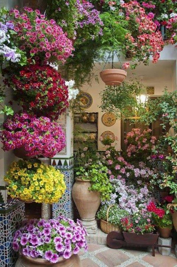 functional patio garden ideas with a lot of different flowers and colors