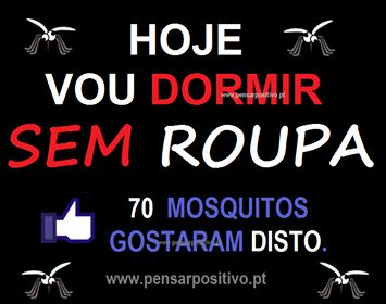 ♥Boa idéia para os mosquitos