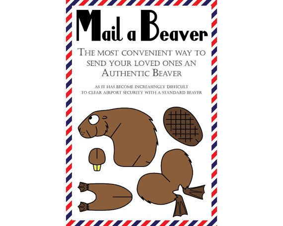 Beaver Postcards Set of 8 Mail a Beaver by greenbananacards