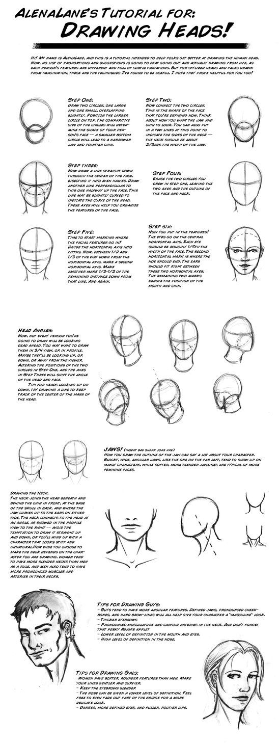 great head drawing tutorial
