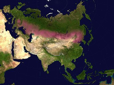 Eurasian Steppe, in red, stretches from the mouth of the Danube almost to the Pacific Ocean.  Consists of temperate grasslands, savannas, and shrublands, bounded on the north by forests and taiga.  Home of such states as the Xiongnu, Scythia, Cimmeria, Sarmatia, Hunnic Empire, and so on. Traditionally an area of nomadic pastoralism (sheep, goats, and horses) which has also benefitted economically from the lucrative Silk Road since the Han dynasty (206 BCE-220 CE).