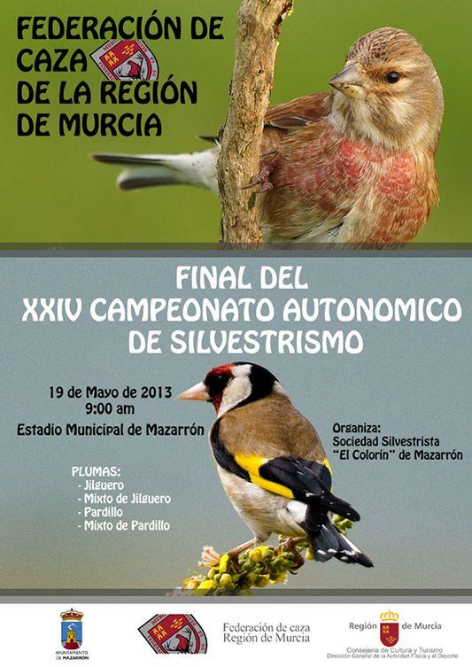 Final del XXIV Campeonato Autonómico de Silvestrismo de la Región de Murcia