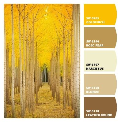 Neutral Bright Saturated Yellows Strong Bold Browns Tans Warm Hues Palette Beiges Monochromatic Interior Exterior House Vivid Mustard Yellow Birch Trees In