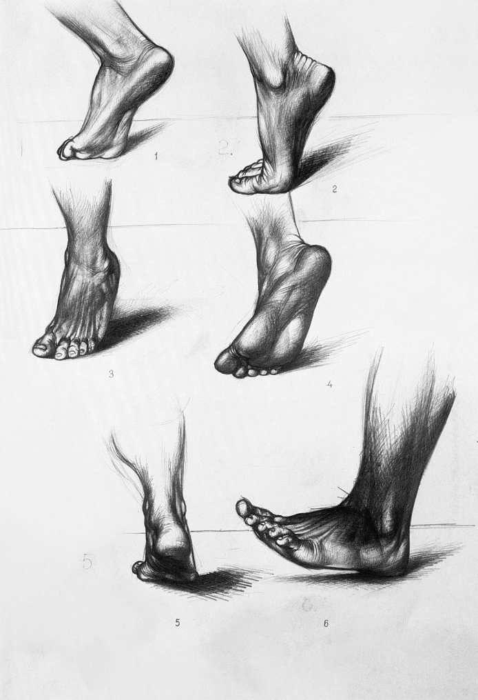 Barcsay Jenő: A láb mozgás közben 1953  Jenő Barcsay: Moving foot 1953