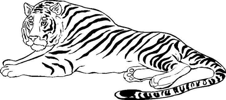 9 beste tiger ausmalbilder für kinder  1ausmalbilder
