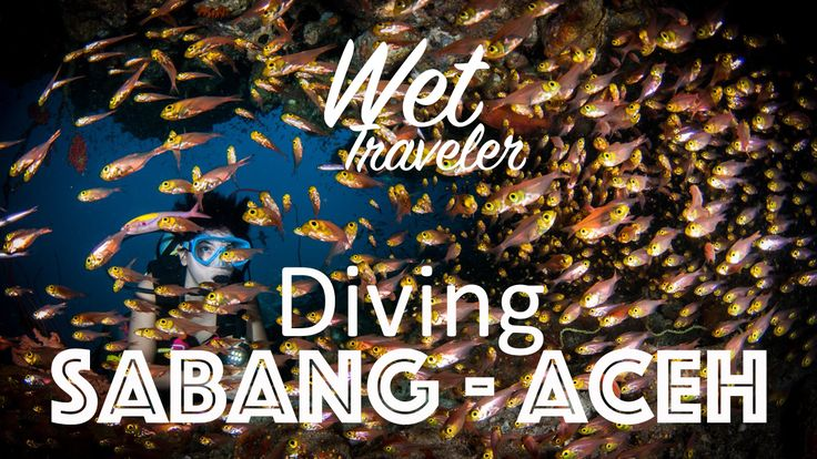 Wet Traveler episode Diving Sabang, Aceh, The most western island in Indonesia. #divingindonesia #divingaceh #scuba #padi
