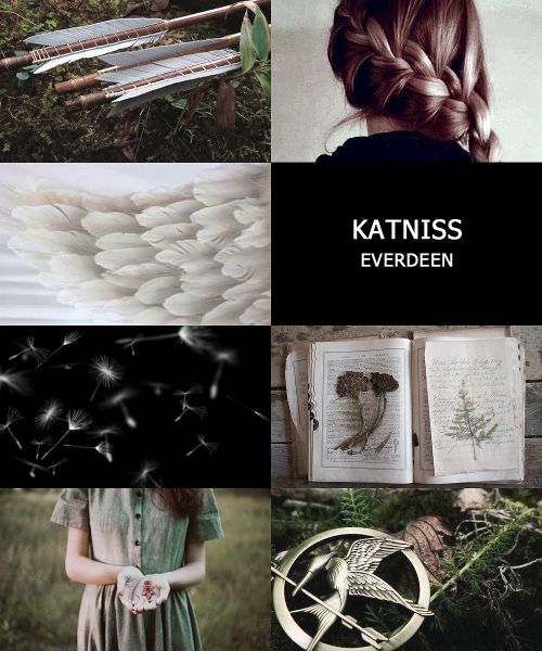 "kaltained:  sf ya lit meme: [1/20] characterskatniss everdeen, the hunger games ""my name is katniss everdeen. i am seventeen years old. my home is district 12."""