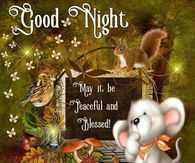 Good Night, May It Be Peaceful And Blessed!