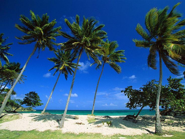 Gratis mobiltelefon bakgrunnsbilde - Vakre steder fra våre drømmer: http://wallpapic-no.com/landskap/vakre-steder-fra-vare-drommer/wallpaper-40457