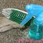 How to Naturally Clean Vomit Off the Carpet {Plus an All-purpose Carpet Cleaner Recipe}