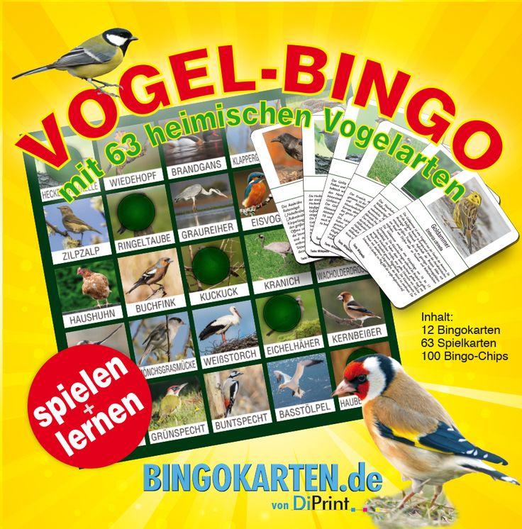 Vogel-Bingo ist das spannende BINGO-Spiel für die ganze Familie, im Freundeskreis oder in der Schule. Spielen und dabei noch etwas über Vögel lernen macht dieses Spiel zu einem absoluten Muss.  Spielbar mit bis zu 12 Personen ab einem Alter von 5 Jahren oder mit unseren Ersatz-Karten mit unbegrenzter Anzahl. Alle Vogel-Bingo Karten sind unterschiedlich, egal wieviel Sie bestellen