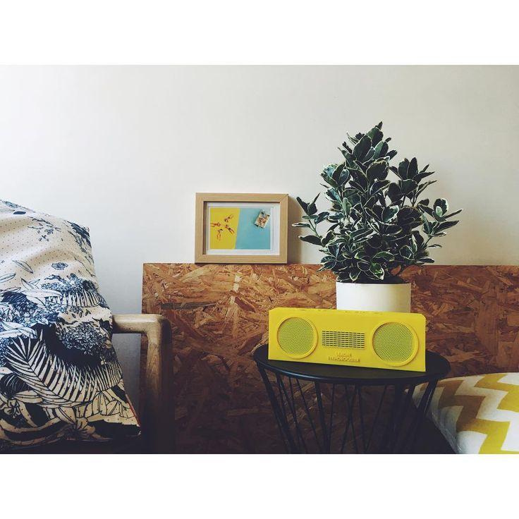 https://www.instagram.com/p/BJgEnN6DN_J/?taken-by=laurapujol