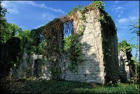 Pelee island winery ruins