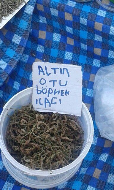 Fethiye pazarı. Altın otu böbrek ilacı. :)
