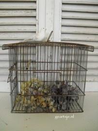 Draadijzer vogelkooitje
