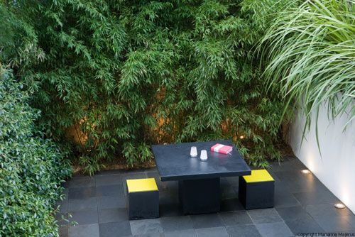 Small city garden small city garden ideas pinterest for Small shady courtyard ideas