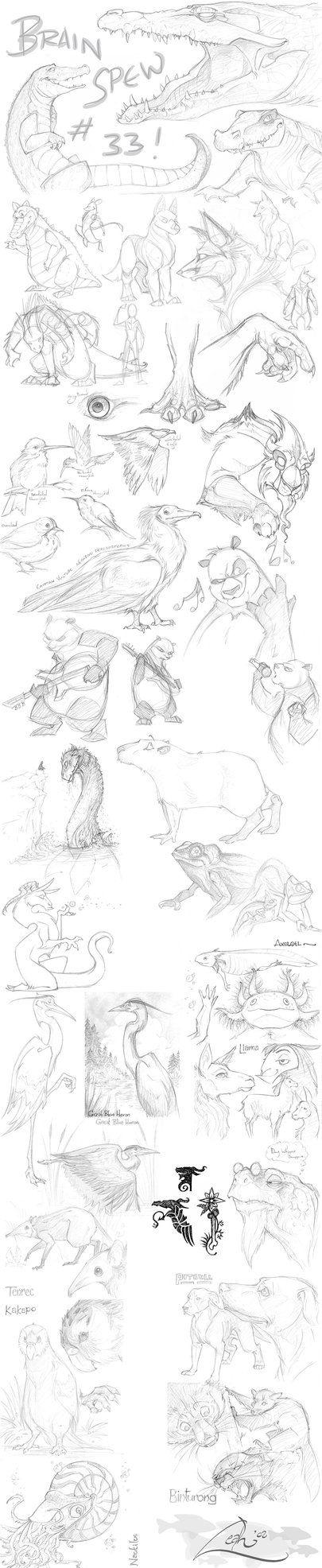Originally Posted: December 21, 2008 ----- Buncha animal doodles I'd been waiting to post 'til I got hold of a scanner. Some of the journal animals are in here, the others I'm still working on. Tha...