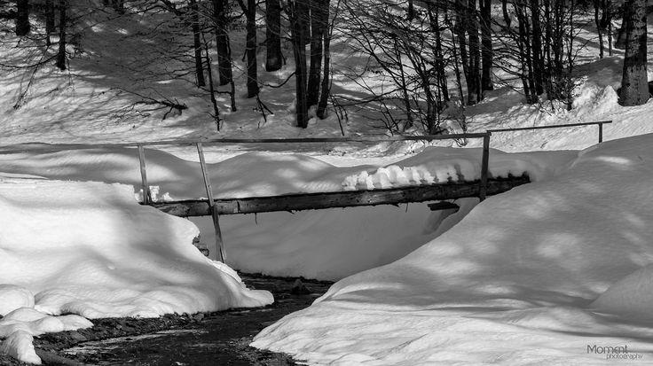 Moment Photography - winter landscape