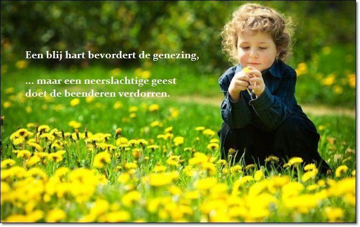 Een blij hart bevordert de genezing,maar een neerslachtige geest doet de beenderen verdorren.   Spreuken 17:22