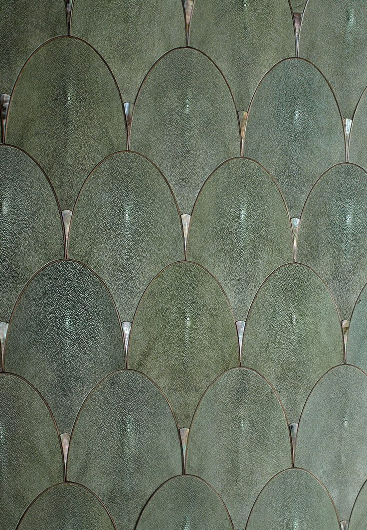 Shagreen Scales