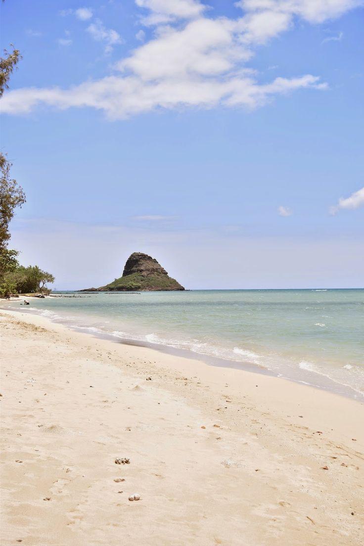 CommuniKait: Surprise Dates & Hidden Islands