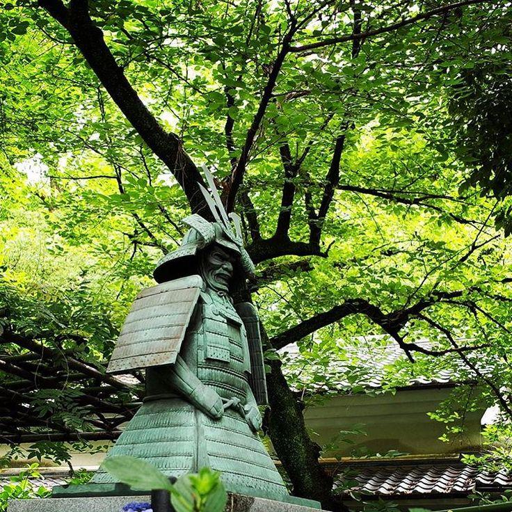 """295 Likes, 1 Comments - Takahiro NISHIOKA 🇯🇵🌸 (@takahiro_nishioka) on Instagram: """"藤森神社の神鎧像。木と重なってしまった😑"""""""