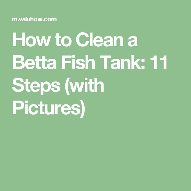 Best 25 fish tank themes ideas on pinterest aquarium for Best way to clean a fish tank