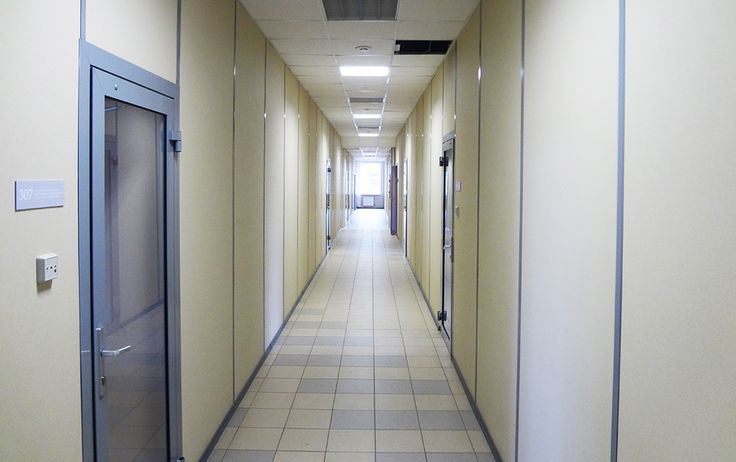 Облицовка стен гипсовинилом. Алюминиевые офисные двери