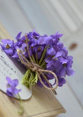 Un petit bouquet de violettes ... J'adore tout dans cette fleur : couleur, odeur, la fragilité.