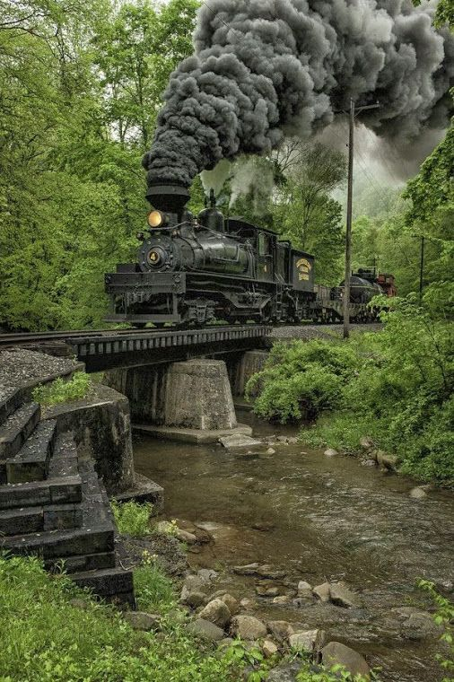 Cass Scenic Railroad State Park, Cass, Pocahontas County, West Virginia.