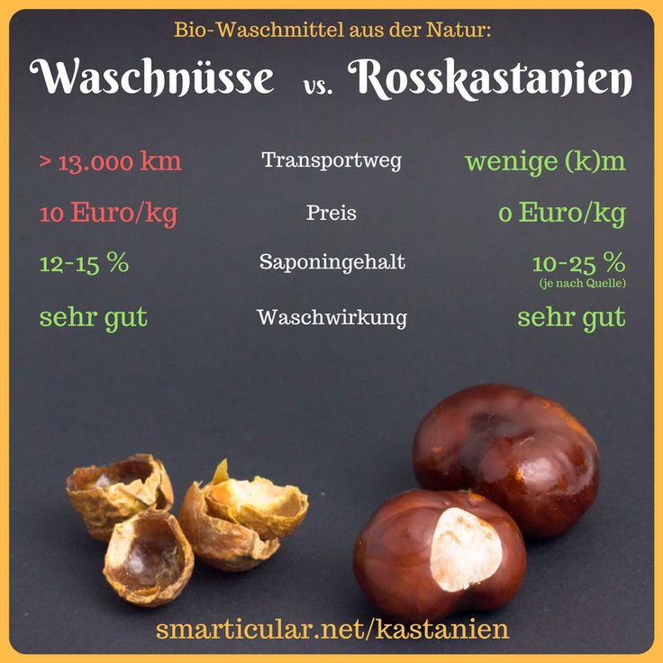 Kastanien sind die regionalen Waschnüsse und viel nachhaltiger! - So einfach machst du Kastanien-Waschmittel selbst!