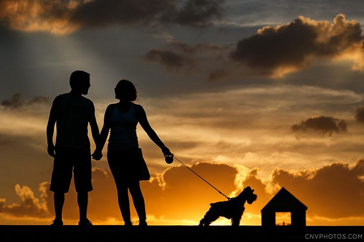 foto de silhueta de casal junto com o cachorro no por do sol em Curitiba. Como levar o cachorro para a sessão e o ensaio fotográfico.