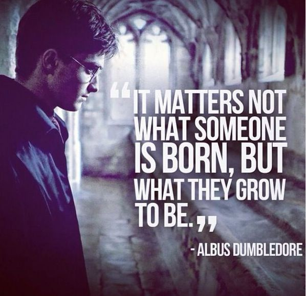 Favourite Harry Potter Quotes: 54 Best Images About Harry Potter On Pinterest
