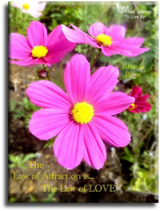 Rhonda Byrne quote: The Law of Attraction is the Law of Love. Spiritual Quotes To Live By