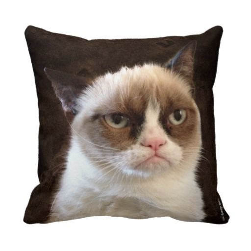 Grumpy Cat Brown Pillow http://www.zazzle.com/grumpy_cat_brown_pillow-189163401586834104?rf=238282136580680600