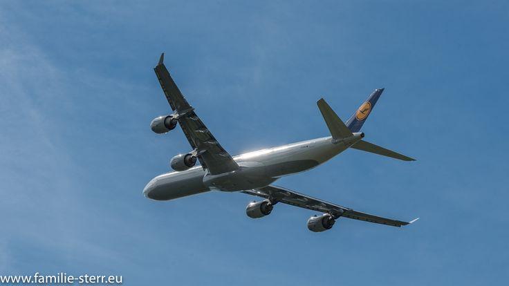 Abendsonne spiegelt sich im startenden Lufthansa Airbus A340-642 D-AIHX am Flughafen München