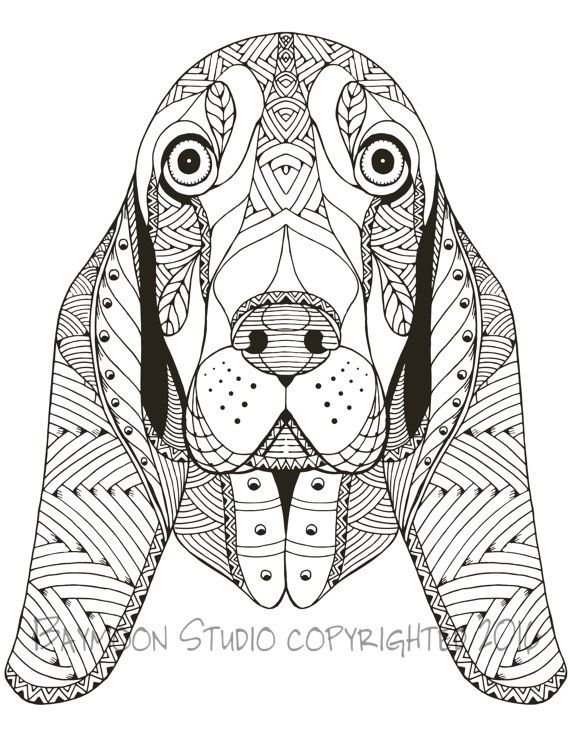 basset hound face coloring page printable coloring pages adult coloring pages digital illustration - Coloring The Pictures
