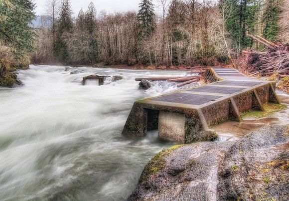 Fish ladders in Cowichan Valley, British Columbia, Canada: Gadling Photo, Photo Locations, Fish Ladder, Ladders, Gadl Photo, Adobe Photoshop, Head Photo, Photo Gears