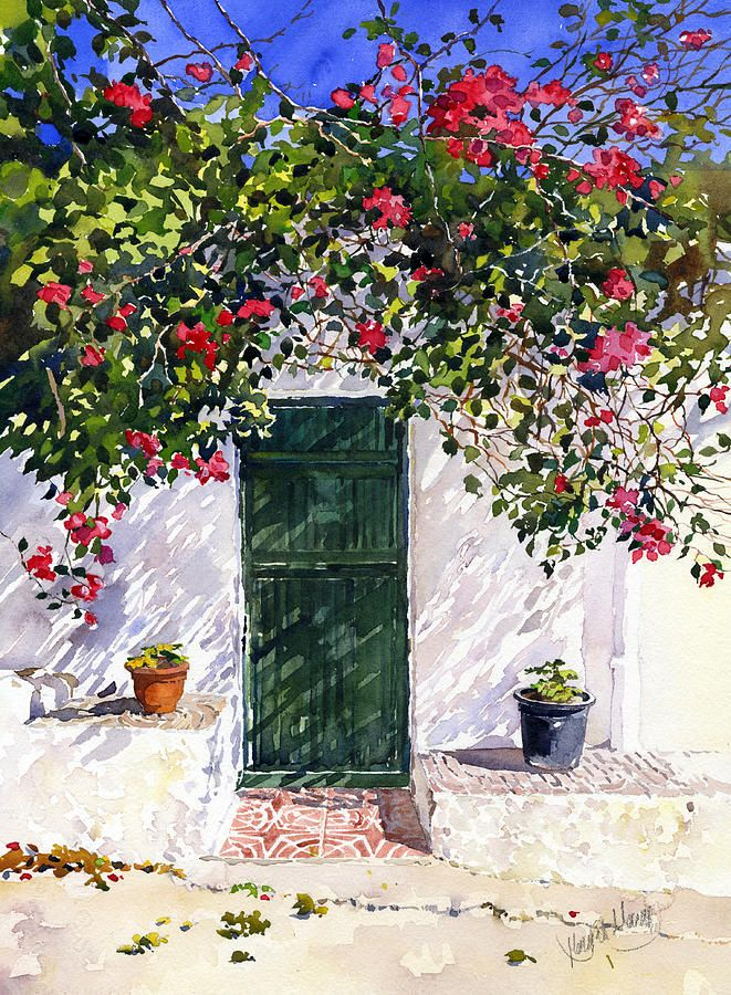 Green Door With Bougainvillea Painting by Margaret Merry