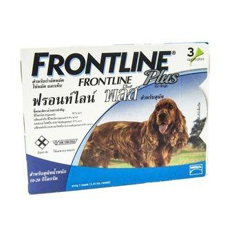 แนะนำสำหรับคุณ Frontline Plus for dogs ยาหยอดกำจัดเห็บ หมัด สุนัข 10-20kg บรรจุ 3 หลอด ( 1 box ) รีวิวถูกสุดๆ Frontline Plus for dogs ยาหยอดกำจัดเห็บ หมัด สุนัข จัดส่งฟรี  ----------------------------------------------------------------------------------  คำค้นหา : Frontline, Plus, for, dogs, ยา, หยอด, กำจัด, เห็บ, หมัด, สุนัข, 1020kg, บร, จุ, 3, หลอด, 1, box, Frontline Plus for dogs ยาหยอดกำจัดเห็บ หมัด สุนัข 10-20kg บรรจุ 3 หลอด ( 1 box )    Frontline #Plus #for #dogs #ยา #หยอด #กำจัด…