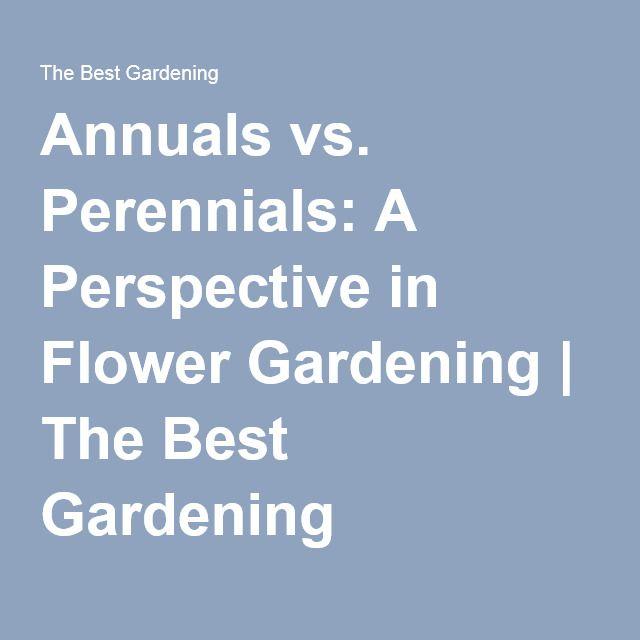 Annuals vs. Perennials: A Perspective in Flower Gardening | The Best Gardening