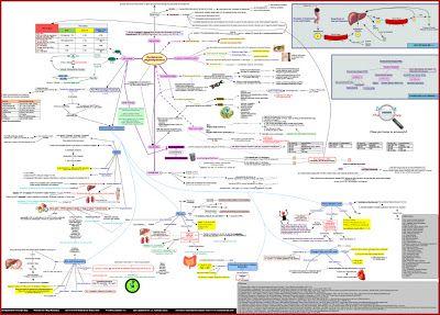 The DYSlipidemia International Study (DYSIS)-Egypt: A ...