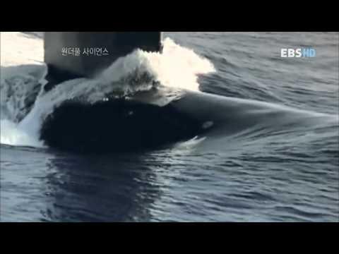 최강의 비밀무기 잠수함