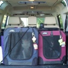 Car safety for dogs! Secure your dog and keep them safe in the car!