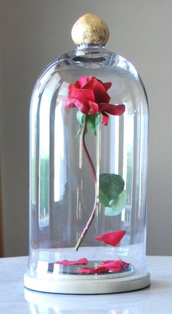 Enchanted floating rose